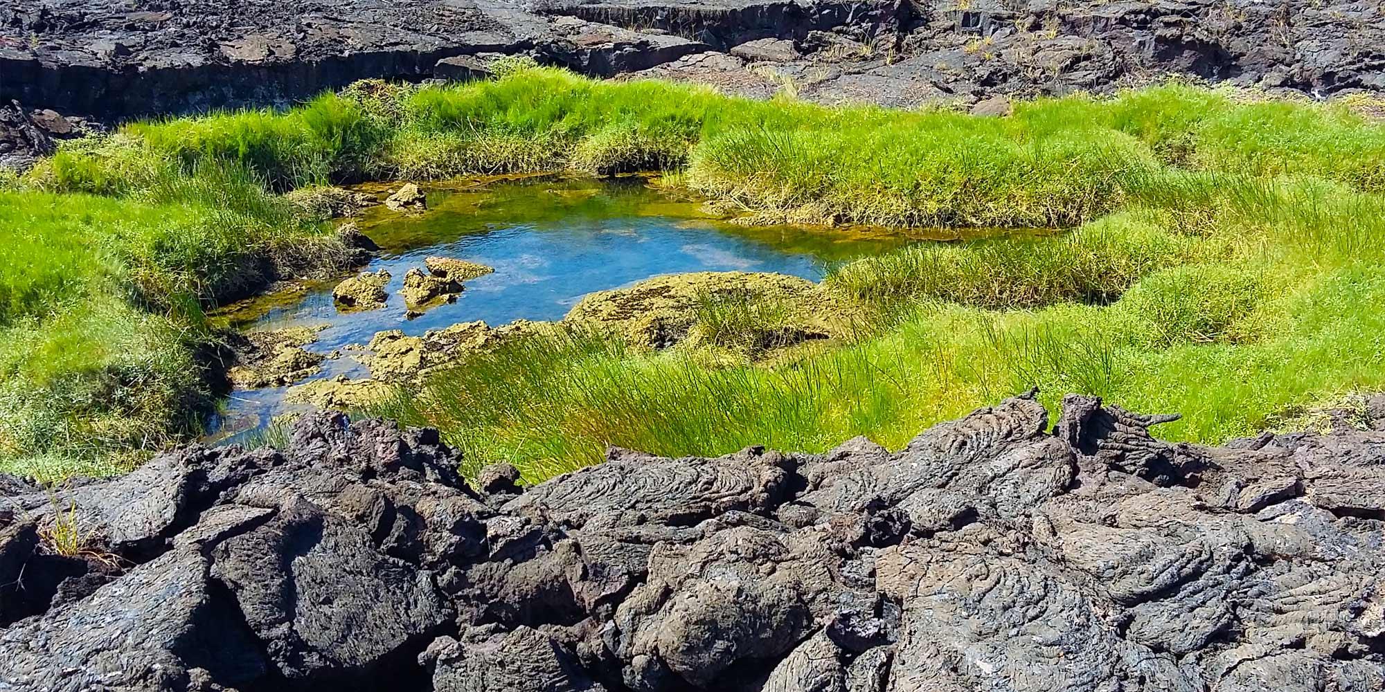 Where Do Galapagos Islands Tours Start