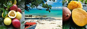 2 Inselkombination Martinique + Guadeloupe