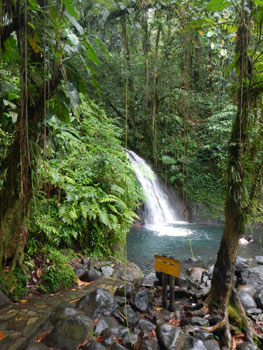 Guadeloupe & Dominica