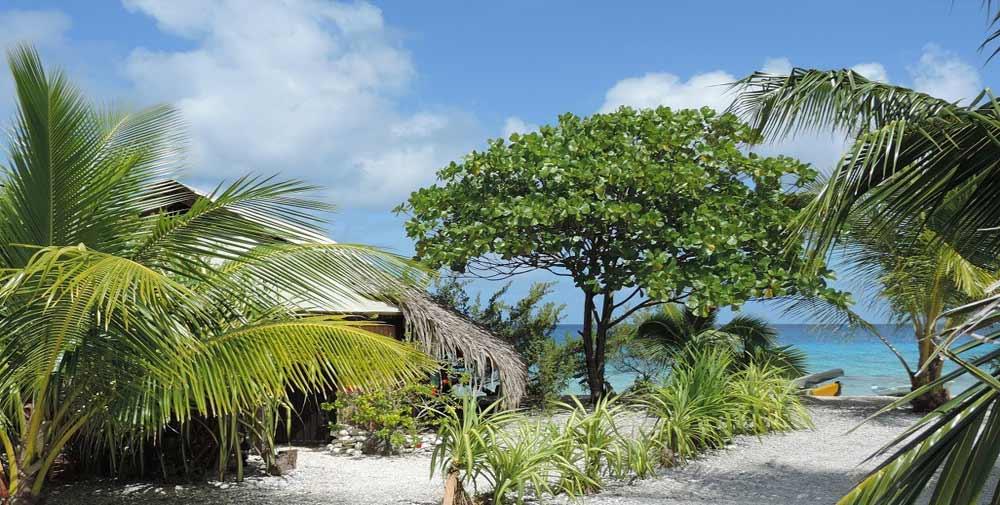 Pension tevahine dream rangiroa tuamotu - Rangiroa urlaub ...