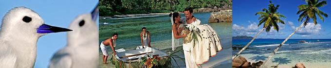Heiraten Hochzeit Seychellen